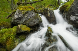 little streams