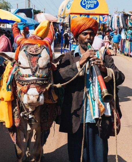 Goa wednesday market